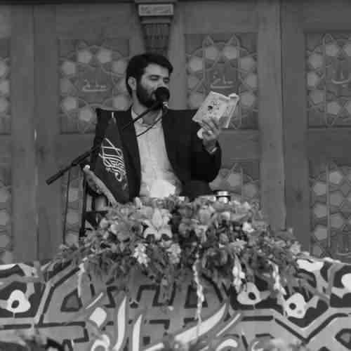 Labaik Ya Hasan Jan دانلود نوحه لبیک یا حسن جان از میثم مطیعی