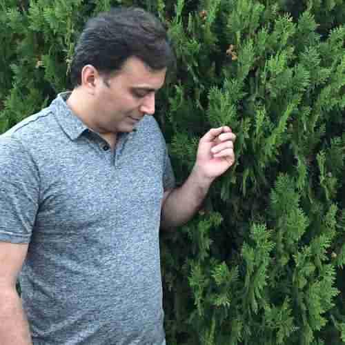 Majid Akhshabi Heyfe دانلود آهنگ مجید اخشابی حیفه