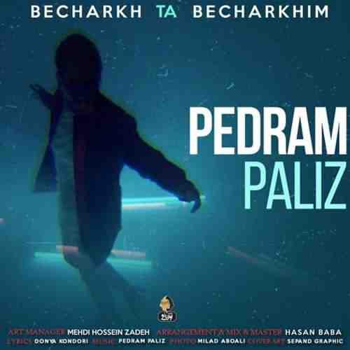 Pedram Paliz Becharkh Ta Becharkhim دانلود آهنگ پدرام پالیز بچرخ تا بچرخیم