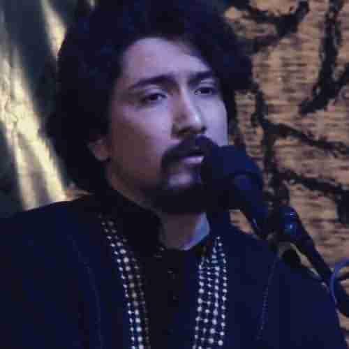 Mohammad Zakerhossein Zar دانلود آهنگ گلم گلم گل بی خارم ز دوریت زار و بیمارم محمد ذاکرحسین