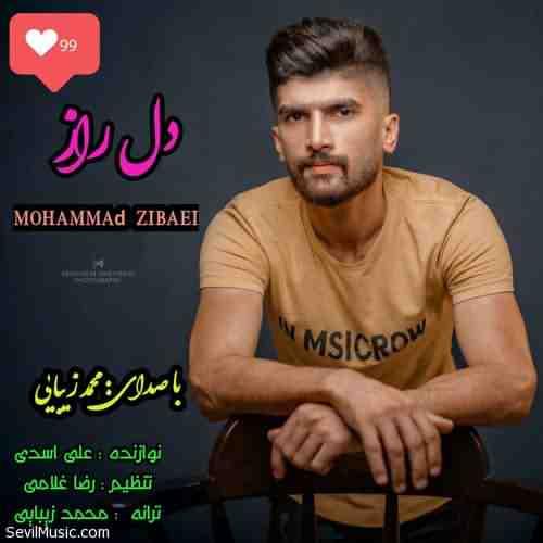 Mohammad Zibaei Dele Raz دانلود آهنگ محمد زیبایی دل راز