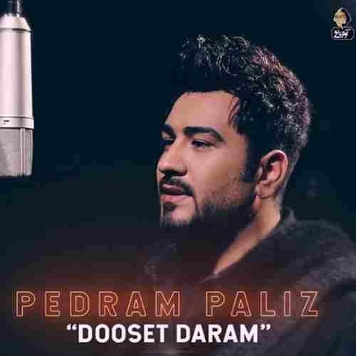 Pedram Paliz Dooset Daram دانلود آهنگ پدرام پالیز دوست دارم