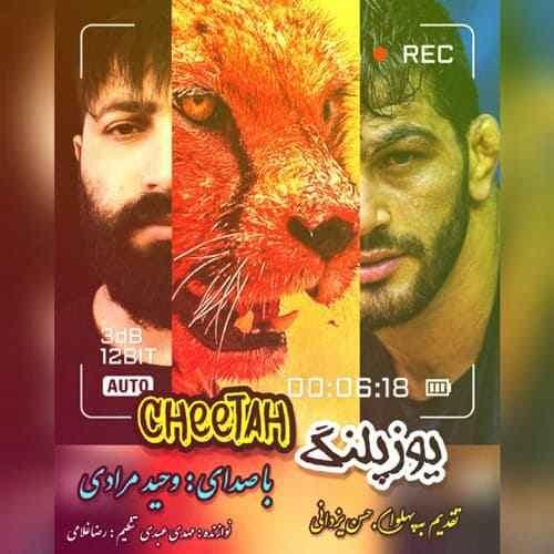 Vahid Moradi Cheetah دانلود آهنگ وحید مرادی یوزپلنگ